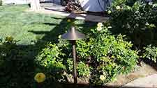 Landscape Lighting - Priority Electric